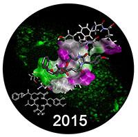 """Das Logo der diesjährigen CeBiTec-Konferenz """"Drug Conjugates for Directed Therapy"""" zeigt den potentiellen Anti-Tumor Wirkstoff Cryptophycin, der bestimmte Strukturen in Krebszellen erkennt. Diese Bindung beeinträchtigt die Zellteilung, woraufhin die Zelle abstirbt. Foto: Universität Bielefeld"""