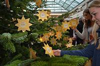 In diesem Jahr werden 644 Wünsche am Wunschbaum hängen, so viele wie noch nie zuvor. Foto: Universität Bielefeld