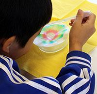 Ein Junge tropft Wasser auf einen Kaffeefilter. So zeigt er, dass schwarzer Filzstift aus mehreren Farben besteht. Mit solchen einfachen Experimenten sollen Kindern und Jugendlichen chemische Vorgänge näher gebracht werden. Foto: Universität Bielefeld