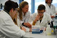 24 Schülerinnen und Schüler forschen in einer internationalen Gruppe gemeinsam im Labor der Universität Bielefeld. Foto: Universität Bielefeld