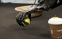Even though the robot hands are strong enough to crush the apple, they dole out their strength for a fine-touch grip that also won't damage delicate objects. This is made possible by connecting tactile sensors developed at CITEC with intelligent software. Photo: Bielefeld University