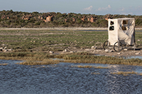 Die Forschenden beobachteten die Vögel mit Fernrohren und Teleskopen und bauten sich fahrbare Verschläge, um für die Vögel unsichtbar zu bleiben. Foto: Universität Bielefeld/ L. Eberhart-Phillips