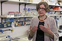 Die Biochemikerin Professorin Dr. Dorothee Staiger von der Universität Bielefeld forscht seit zwanzig Jahren an der inneren Uhr der Pflanzen. Screenshot: research_tv