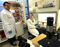 Dr. Björn Kowalewski und Mai-Britt Ilse haben für die Studie mit Zellkulturen nachgewiesen, dass das mutierte Gen der Patienten seine Funktion verloren hat. Foto: Universität Bielefeld