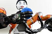 Die maschinellen Hände tasten und greifen mit Hilfe zusätzlicher Sensorik. Der Roboterkopf Floka gibt währenddessen ein direktes Feedback. Foto: CITEC/Universität Bielefeld
