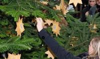 Das Interesse an den Wunschsternen war groß. Hier wird ein Wunschstern vom Weihnachtsbaum gepflückt.