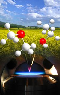 Die  Verbrennungschemie von Biokraftstoffen wird direkt in der Flamme  analysiert Foto: Kuiwen Zhang, Hefei, China)