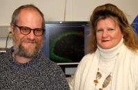 Die Professoren Dr. Christian Kaltschmidt und Dr. Barbara Kaltschmidt und ihr Team haben einen Mechanismus entdeckt, der die Bildung neuer Nervenzellen steuert.