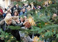 Direkt nach der Freigabe des Wunschbaums pflückten Studierende und Beschäftigte der Universität die ersten Wünsche von den Sternen.