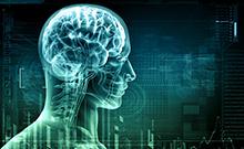 """""""Human brain""""-Projekt"""