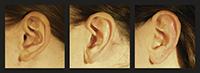 Forscher der Universität Bielefeld haben nachgewiesen, warum Menschen Geräusche von hoch gelegenen Objekten oft als hohe Töne wahrnehmen. Ihre Analyse deutet darauf hin, dass die Form des menschlichen Ohrs die akustischen Merkmale der natürlichen Umwelt widerspiegelt. Foto: Parise & Ernst