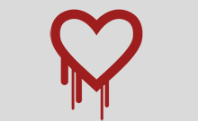Logo des Heartbleed-Bugs