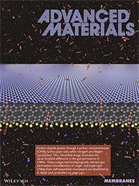 """Im Juni 2014 titelte das Forschungsmagazin """"Advanced Materials"""" mit Kohlenstoff-Nanomembranen, die Gas filtern und wies damit auf Forschungsergebnisse aus der Arbeitsgruppe von Prof. Dr. Armin Gölzhäuser hin. Foto: Advanced Materials"""