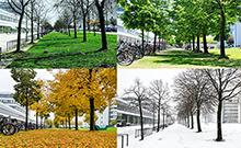 Jahreszeitenfoto Copyright: Universität Bielefeld