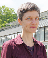 Professor Dr Caroline Müller heads the new DFG Research Unit on chemodiversity in plants. Photo: Bielefeld University